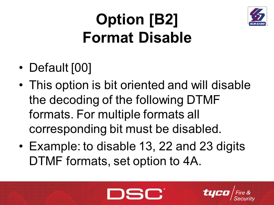Option [B2] Format Disable